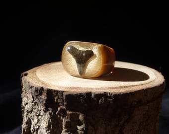 Fossil Shark Tooth Ring