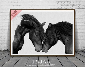 Horse Photography, Black and White Photo, Wall Art Print, Printable Large Poster Digital Download, Icelandic Horse, Equestrian, Contemporary