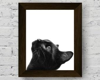 black and white animal wall art, nursery animals print, pet portrait, cat photography, kids room poster, printable artwork, digital download