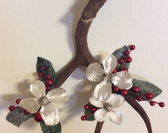Real deer antler wall decoration