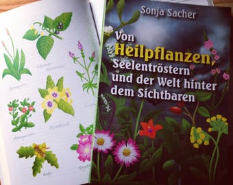"Book ""Of medicinal plants, soul troestern and the world behind the visible"""