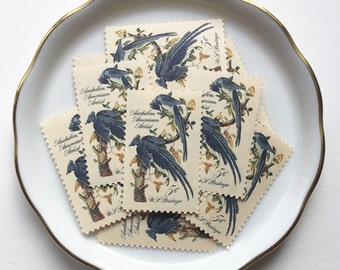 10 Vintage Unused Postage Stamps US // John James Audubon, Blue Birds // 5 cents // 1963