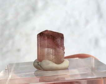 Beautiful bi-color Rubellite Tourmaline 8.25 cts (#18)