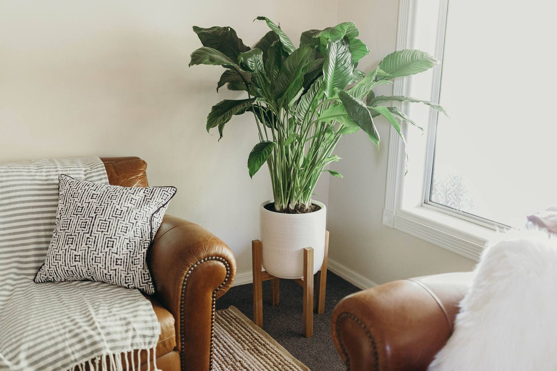 mid century plant stand modern rustic retro home decor chunky legs - Retro Decor