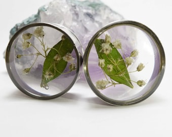 dried flowers + sheet single flared plugs / dried flowers + leaves gauges