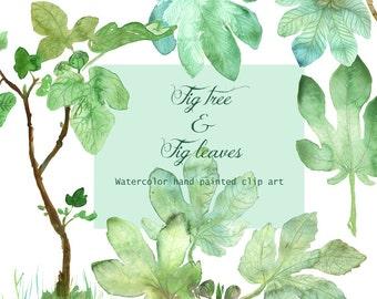 Fig tree clip art, Watercolor Fig leaves, Fig tree foliage illustration, Green leaf, Botanical printable garden, Mediterranean botany, DIY