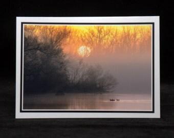 Mallards In The Morning Light 5x7 Blank CArd By ThomasMinutoloPhotos