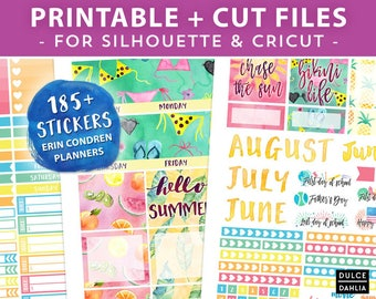 Monthly View Summer Fun Printable Planner Stickers, Colorful July Erin Condren Stickers, Instant Download, Cut Files for Silhouette & Cricut
