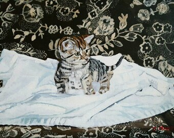 Twink, kitten painting, animal portrait, animal lovers, cat lovers, cats and kittens