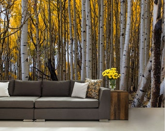 FOREST WALL MURAL, birche tree wall mural, birch wall mural, forest wall decal, pines wall mural, birch wallpaper, birch wall decal