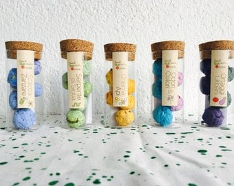 SeedBalls to have fun coloring the city
