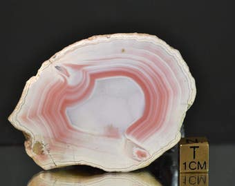 Achat - Agate - Natural Half Nodule - one side polished - unusual light red color - perfect for cutting - 78 g