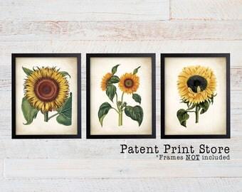 Sunflower Art. Sunflower Prints. Sunflower Decor. Flower Prints. Botanical Art. Botanical Print. Dining. Botanical Wall Art. Farmhouse. 212