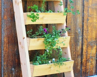 Vertical garden vertical garden in larch wood product made in Italy handmade product