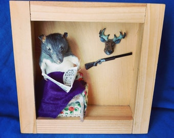 Taxidermy rat/hunting/anthropomorphic