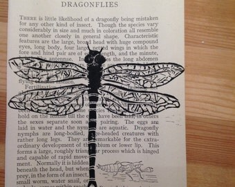 Dragonfly print on recycled insect identification pages