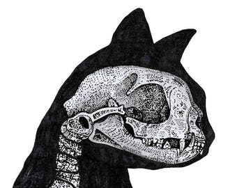 PRINT ONLY Domestic cat skull illustration silhouette gothic oddity anatomy taxidermy drawing