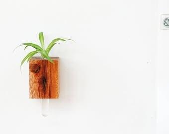 Wooden Magnet Vase v2.0 - Figured Mahogany