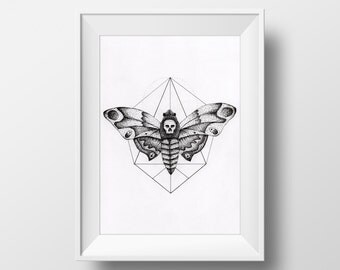 Moth Ink Drawing #1, 6x8