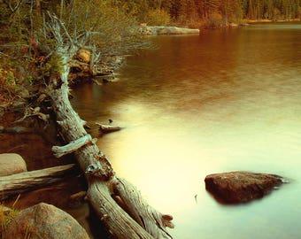 Autumn Along The Shores Of Bear Lake Colorado