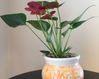 Handmade Pottery, Scraffito Flower Vase