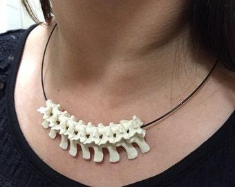 python vertebrae necklace