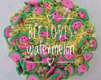 Bec Loves Watermelon | Sprinkle Medley