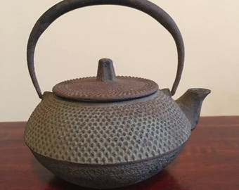 Vintage Japanese Teapot with Infuser