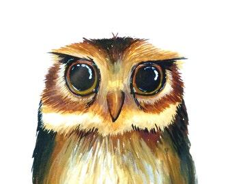 OWL art print, print, print