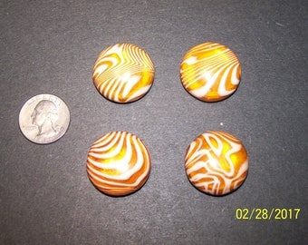 Moon glow, Tight top, Celluloid Buttons