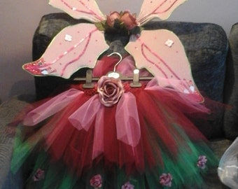 Childs tu tu and Fairy wings outfit