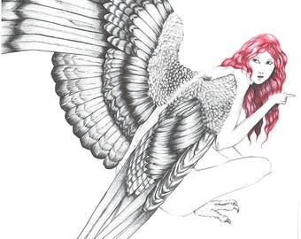 artistic nude Harpy Lady Bird