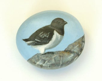 Oil painting of a Little Auk on a pebble