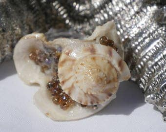 Shimmery Shell Combination, customizable for your needs: hair pin, corsage or boutonnière