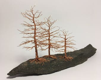 Pine forest | Copper tree | Pine | Forest | Home decoration