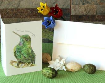 Green- Crowned brilliant Hummingbird