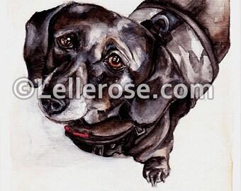 Watercolour Prints - Doe Eyed Dachshund