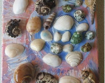 Shells on Canvas