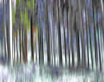 """Abstract photography """"Enchanted forest"""" photo printing, premium photo paper, permanently non-fading"""