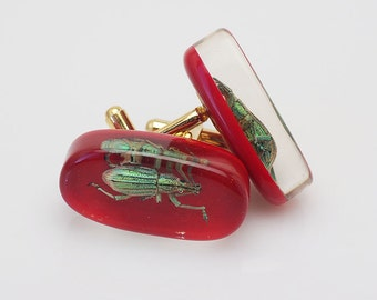 Red lucite cufflinks with real green insects