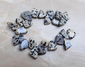 Dalmatian Jasper beads