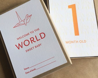 Baby Milestone Box, origami theme, 24 cards, letterpress