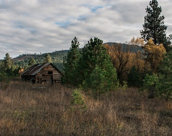 Idaho Cabin Photography, Fine Art Print, Rustic Wall Art, Country Life, Fine Art Print, Rustic Cabin Decor, Farmhouse and Forest Decor