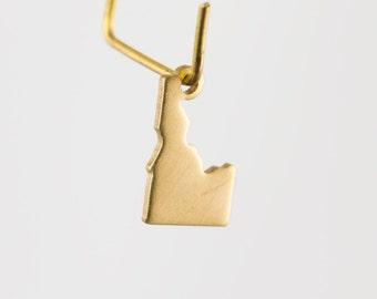 Raw Brass Tiny Idaho Blank State Charm Drops (6) chr228J