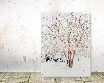 "Winter Snow Scene - Snow on Trees - Birch Tree Art - Canvas Wall Art - Tree Wall Art - Winter Art - Tree Canvas Art Print - 8""x12"""