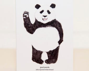 Panda Bear Mini Card