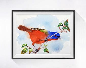 Rainbow  Bunting Wildlife Art  Nature Home Decor Bird Art Prints  Watercolor print Watercolor Painting Kitchen Art WatercolorbyMuren A