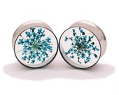 Blue Queen Anne's Lace Embedded Flower Plugs gauges - 9/16, 5/8, 3/4, 7/8, 1 inch