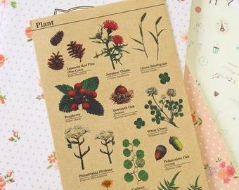 Plant cartoon deco Kraft Stickers