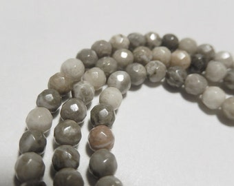 Coral Fossil Gemstone. Faceted Round. 6mm. Semi Precious Gemstone - Your Choice Strand.